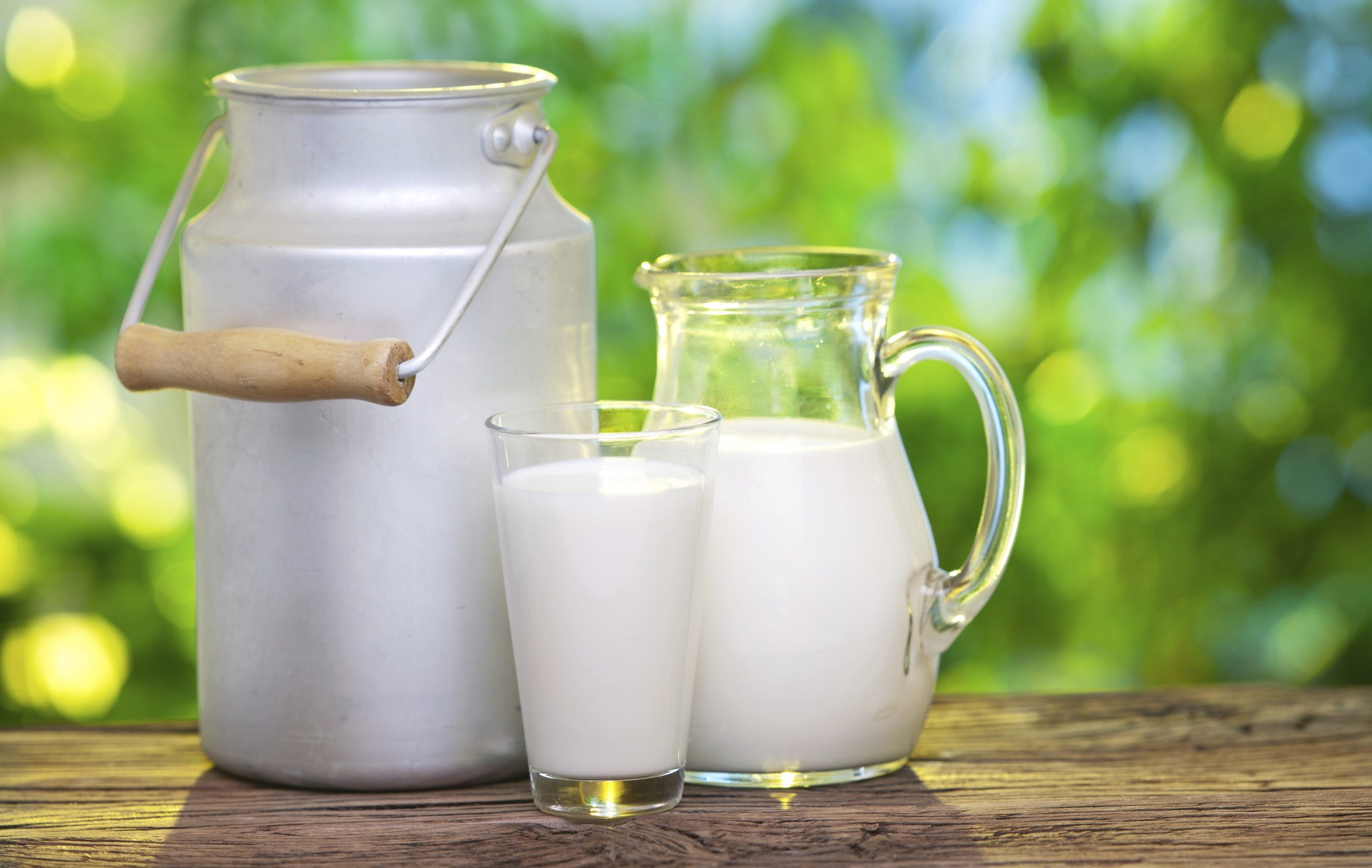 Milk in various dishes.
