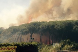 Fiumicino – Vasto incendio in via Coccia di Morto, i video