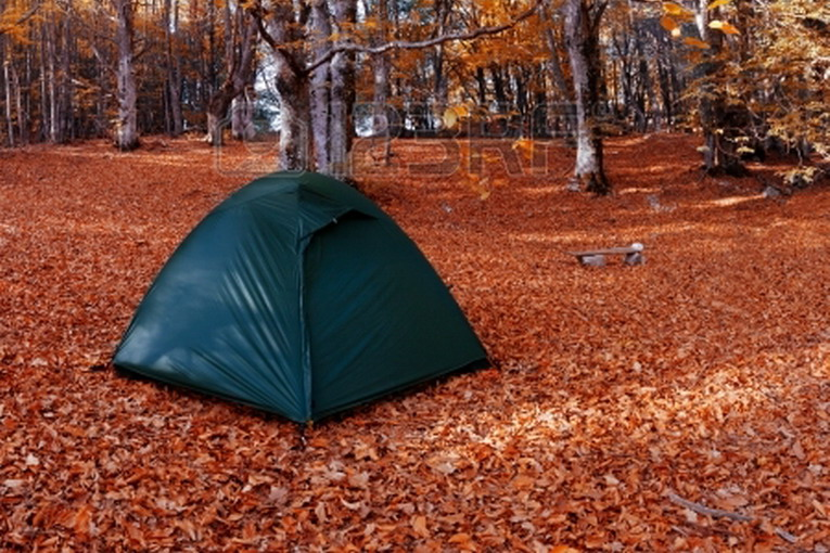 16032563-camping-equipment-tent-in-the-autumn-forest