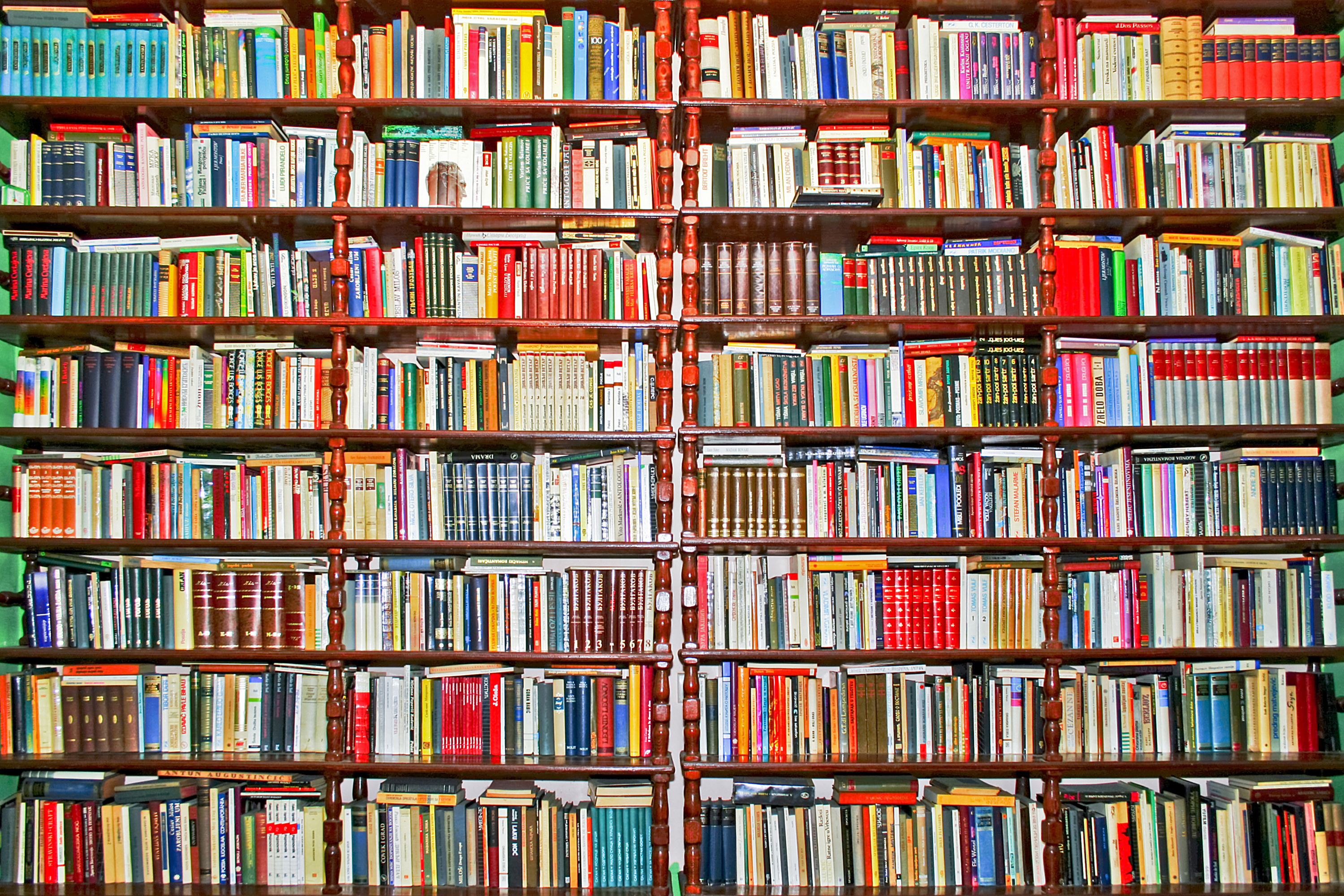 Whole big wall covered with lot of books