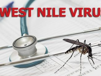 info Virus West Nile