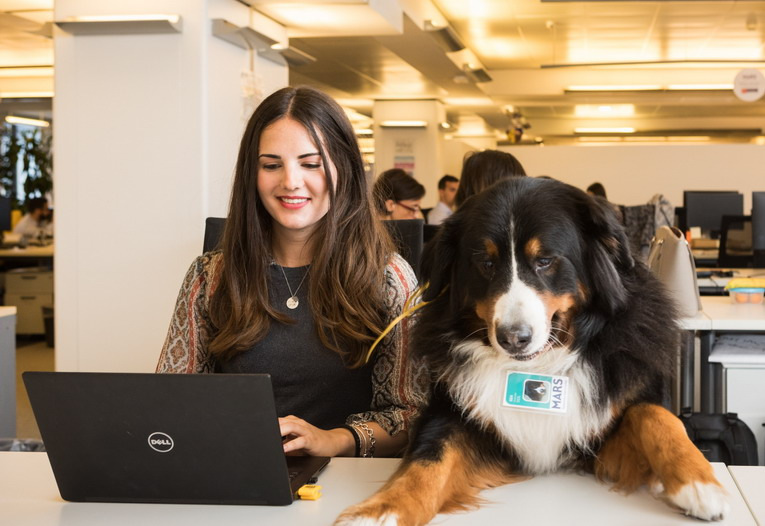 Anche Mars celebra il Take Your Dog to Work Day