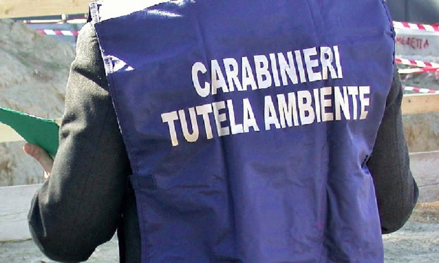 Arrestato mentre appiccava un incendio in area boschiva