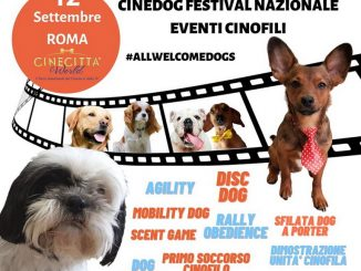 CINEDOG_PortamiConTe Cinecittà world